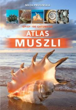 Atlas muszli