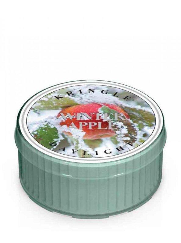 Kringle Candle - Winter Apple - Świeczka zapachowa - Daylight (35g)