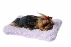 ASKATO Maskotka interaktywna Śpiący piesek na poduszcze - york