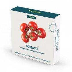 Tregren Tomato, 1 seed pod, SEEDPOD94
