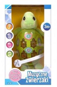 Artyk Zabawka muzyczna- żółwik