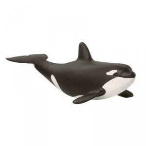 Orka dziecko