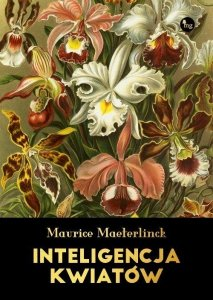 Inteligencja kwiatów. W świetle dzisiejszej wiedzy