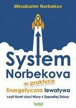 System Norbekova w praktyce. Energetyczna lewatywa czyli triumf cioci Niury z Zapadłej Dziury