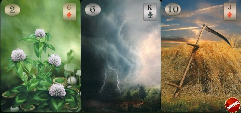 Thelema Lenormand, instr.pl