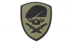 Combat-ID - Naszywka Medal Of Honor Skull - Coyote Tan - Gen I