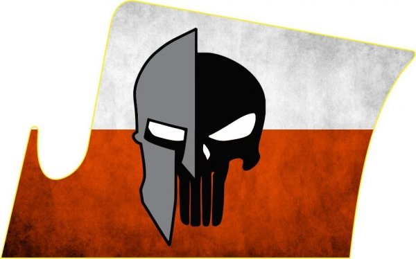 Naklejka - STICKERS MILITARY - Spartan Polska