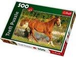 Puzzle 500 Trefl 37184 Koń - Piękno Galopu
