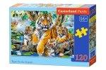 Puzzle 120 Castorland B-13517 Rodzina Tygrysów