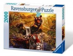 Puzzle 2000 Ravensburger 166466 Kąpiel Tygrysów