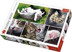 Puzzle 1500 Trefl 26145 Koty - Kolaż