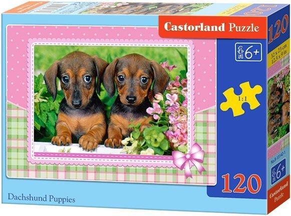 Puzzle 120 Castorland B-13142 Dwa Jamniki - Pieski