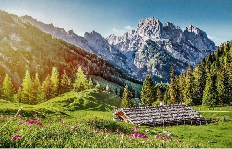 Puzzle 500 Castorland B-53360 Lato w Alpach