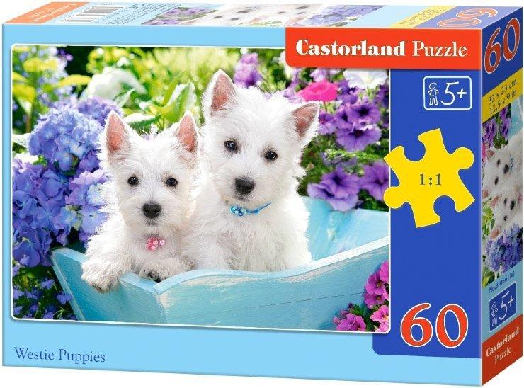 Puzzle 60 Castorland B-066100 Pieski - Szczenięta Westie