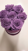 Fioletowe żywe WIECZNE róże w małym fioletowym velvet boxie XS