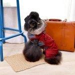 Zimowy kombinezon dla psa ADDIE - bordowy Pinkaholic