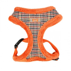 Harness AUDEN orange