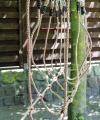 SMALL FOOT Most Linowy Sprawnościowy dla Dzieci
