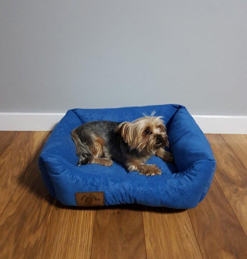 Legowisko dla psa 50 X 40 cm. - Niebieski