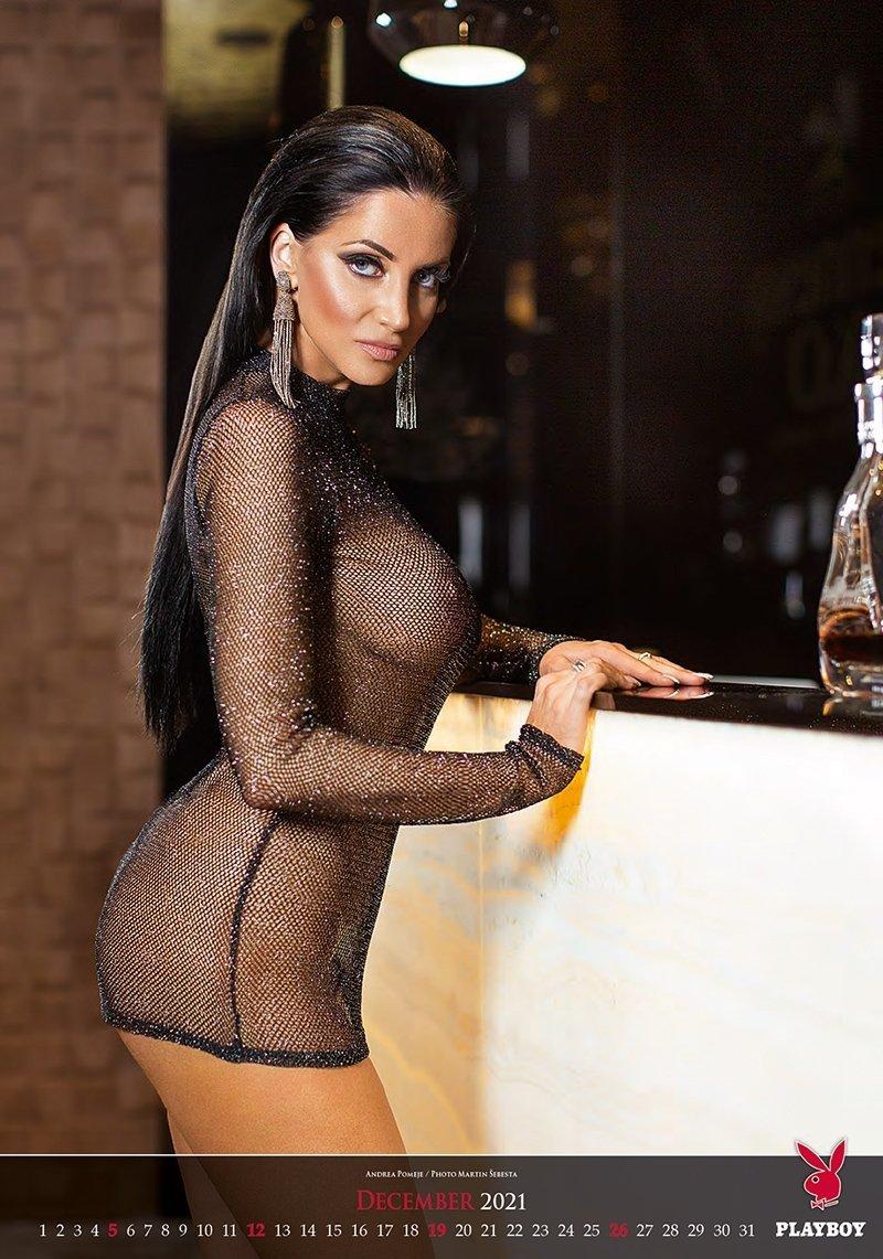 Kalendarz ścienny wieloplanszowy Playboy 2021 - exclusive edition - grudzień 2021