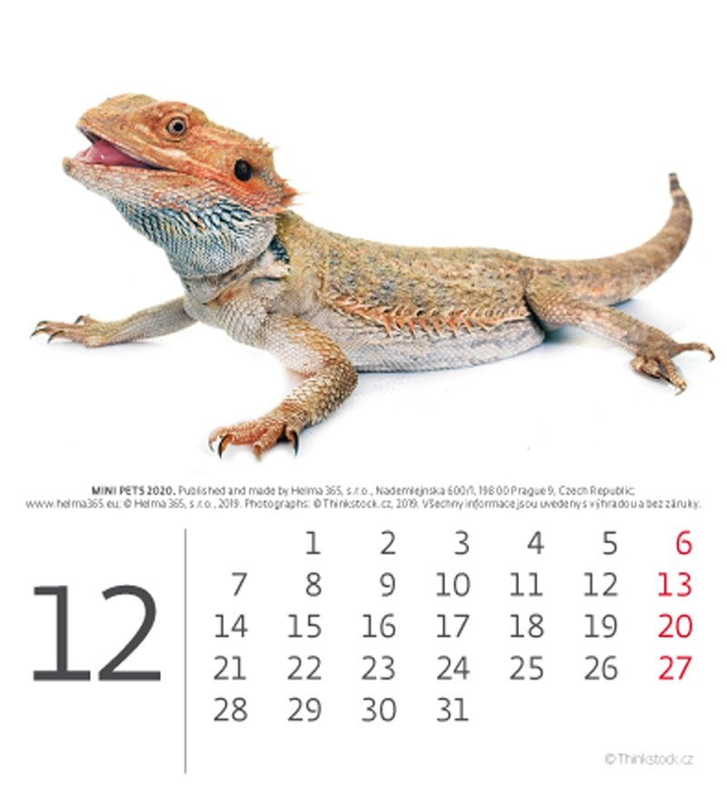 Kalendarz biurkowy mini Zwierzątka 2020 - grudzień