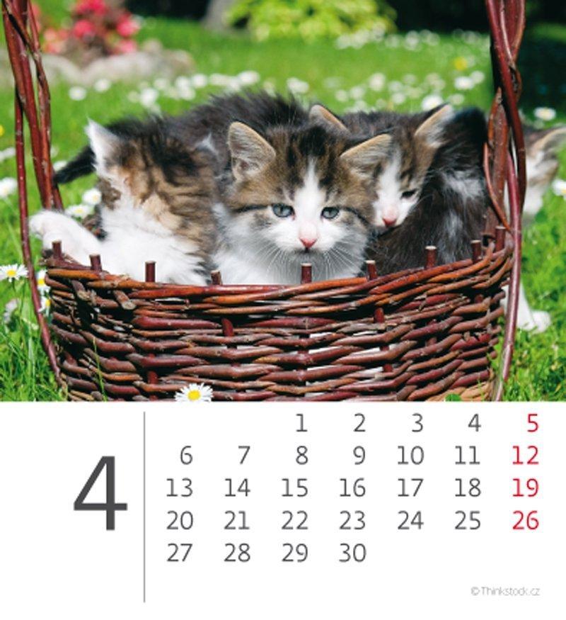 Kalendarz biurkowy 2020 mini Kotki - kwiecień