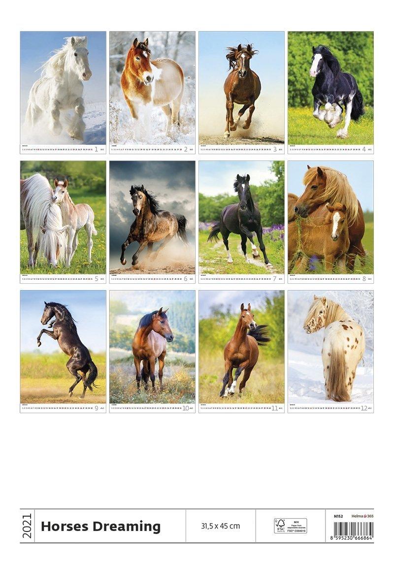 Kalendarz ścienny wieloplanszowy Horses Dreaming 2021 - tylna okładka