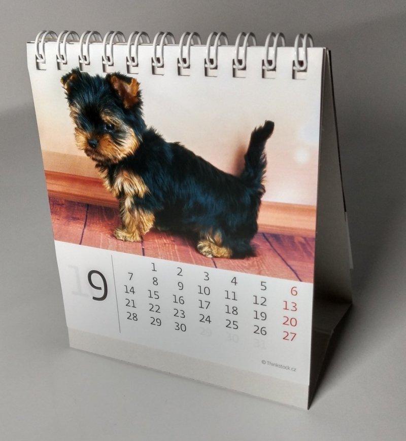 Kalendarz biurkowy mini Pieski 2020 - wrzesień 2020