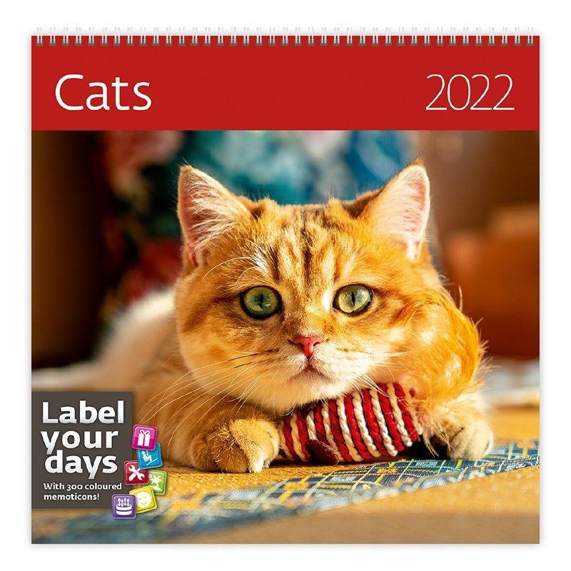 Kalendarz ścienny wieloplanszowy Cats 2022 z naklejkami - okładka