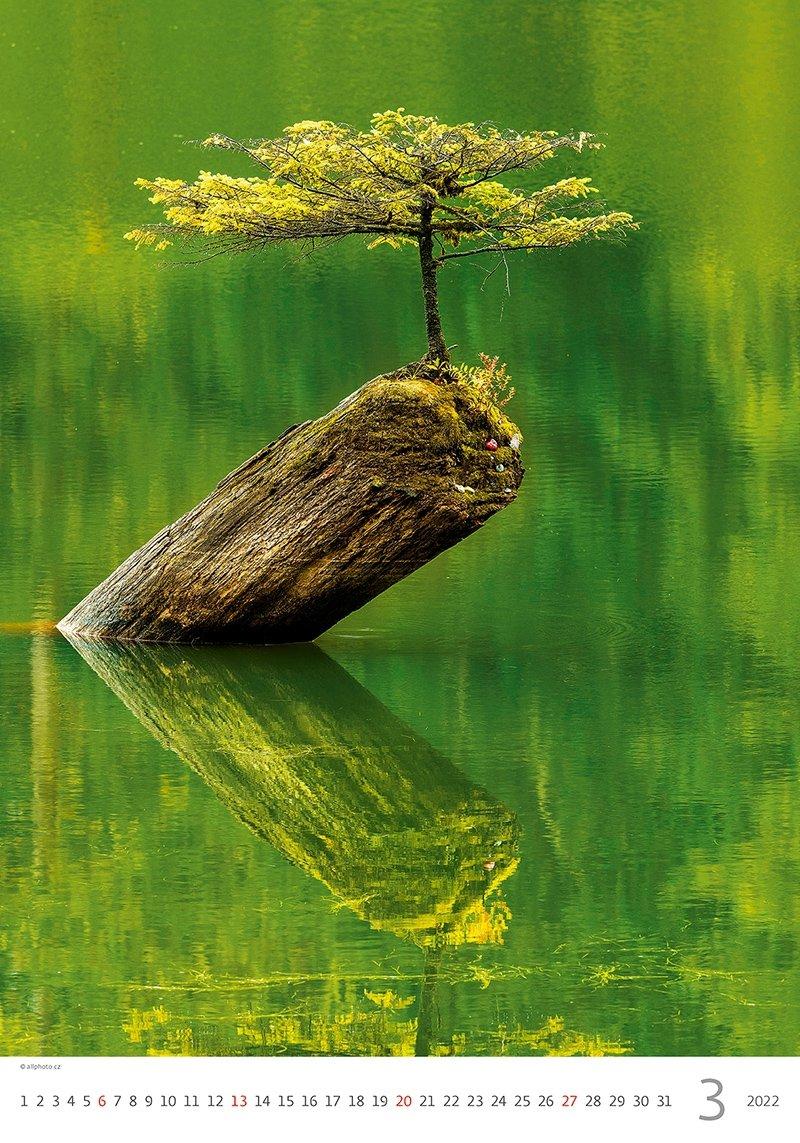 Kalendarz ścienny wieloplanszowy Trees 2022 - marzec 2022