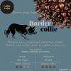 Kawa BORDER COLLIE CoffeeFolks 250g