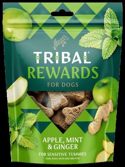 TRIBAL REWARDS Jabłka, imbir, mięta 125G - Ciastka dla psa domowej produkcji