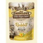 Carnilove Cat 8393 Pouch Trout&Echinacea 85g