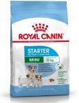 Royal 252570 Mini Starter Mother & Babydog 8,5kg