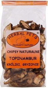 Herbal Pets 4579 Chipsy Natural - Topinambur 75g