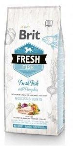 Brit Fresh 0786 Adult Large 2,5kg Fish & Pumpkin