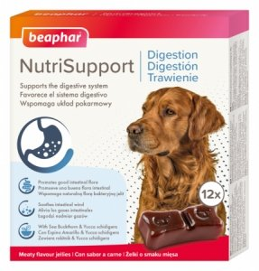 Beaphar 17335 NutriSupport Dog Trawienie 12szt