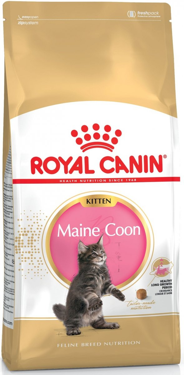 Royal 252090 Maine Coon Kitten 4kg