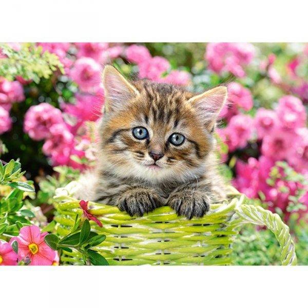 Puzzle 100 kitten in garden