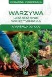 Warzywa Urządzanie warzywnika Poradnik ogrodnika Aranżacja ogrodu