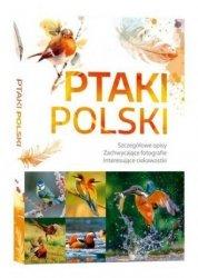 Ptaki Polski Szczegółowe opisy, liczne ciekawostki, zachwycające fotografie