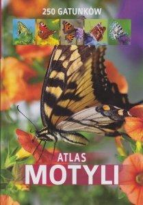 Atlas motyli 250 gatunków Kamila Twardowska, Jacek Twardowski