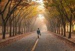 Spacer nieoceniony sprzymierzeniec naszego zdrowia