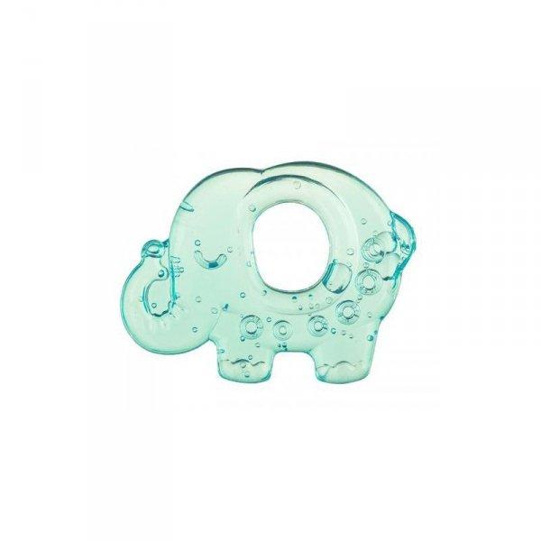 Gryzak wodny słonik