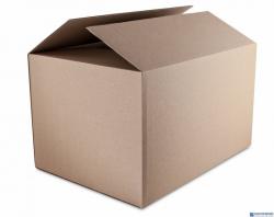 Karton wysyłkowy DATURA 452X320x263 tektura trójwarstwowa szara