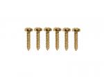 Wkręty mocowania kluczy VPARTS SC-8 (GD)