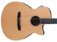 Gitara elektro-akustyczna IBANEZ AEG7TN-NT