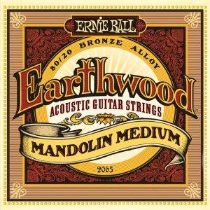 Struny do mandoliny ERNIE BALL 2065 (10-36)
