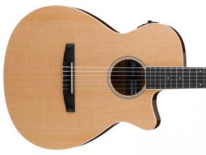Gitara elektro-klasyczna IBANEZ AEG7TN-NT