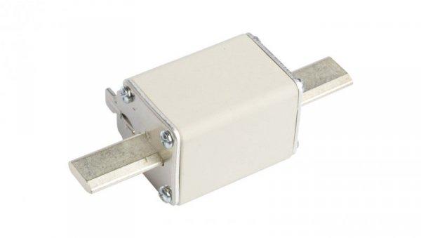 Wkładka bezpiecznikowa NH1 160A gF 500V WT-1 004139119